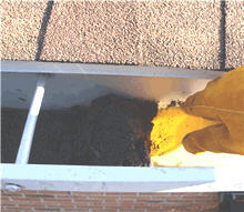 Removing Granules From Gutter